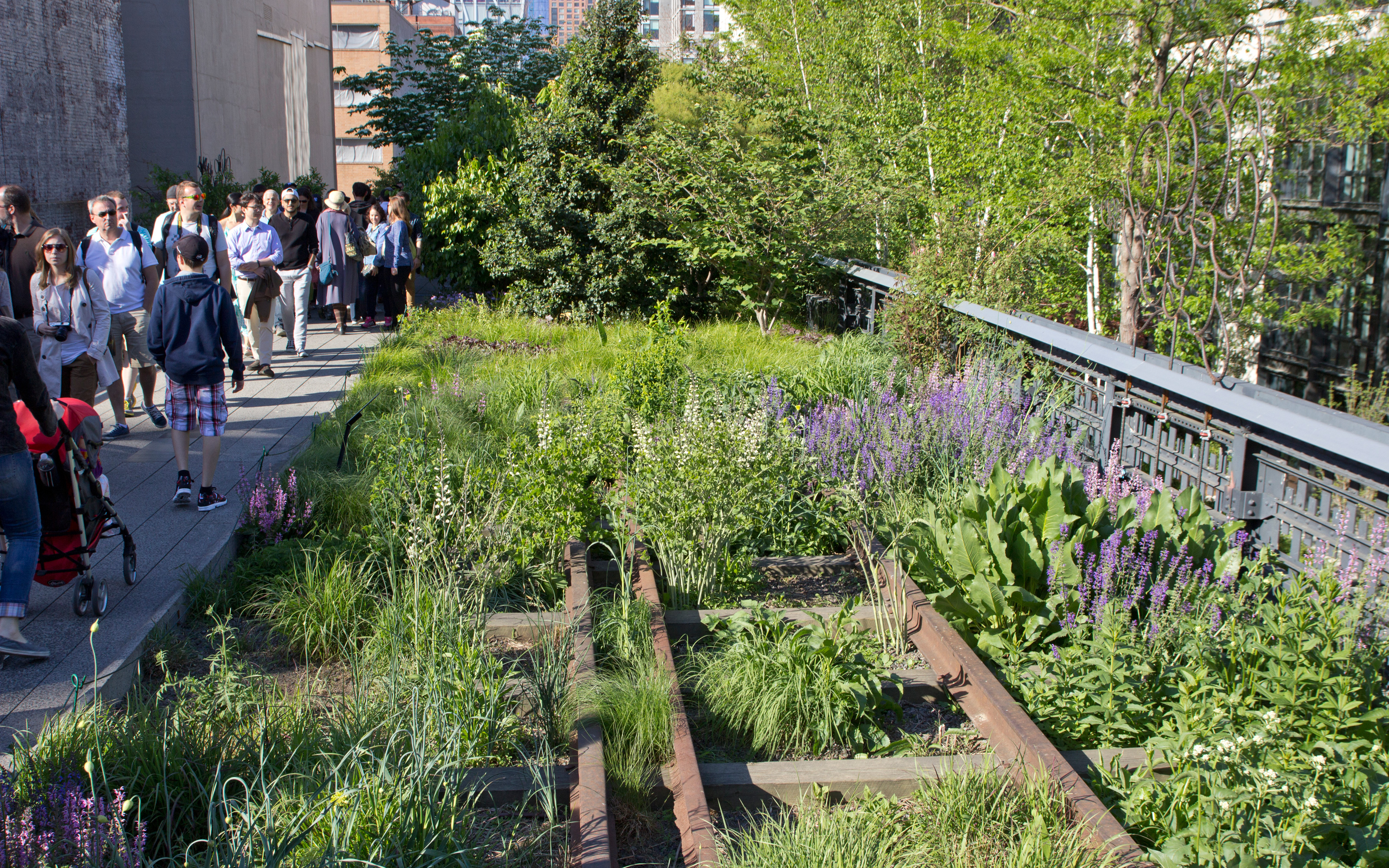 High Line Park New York City Zinco Green Roof Systems