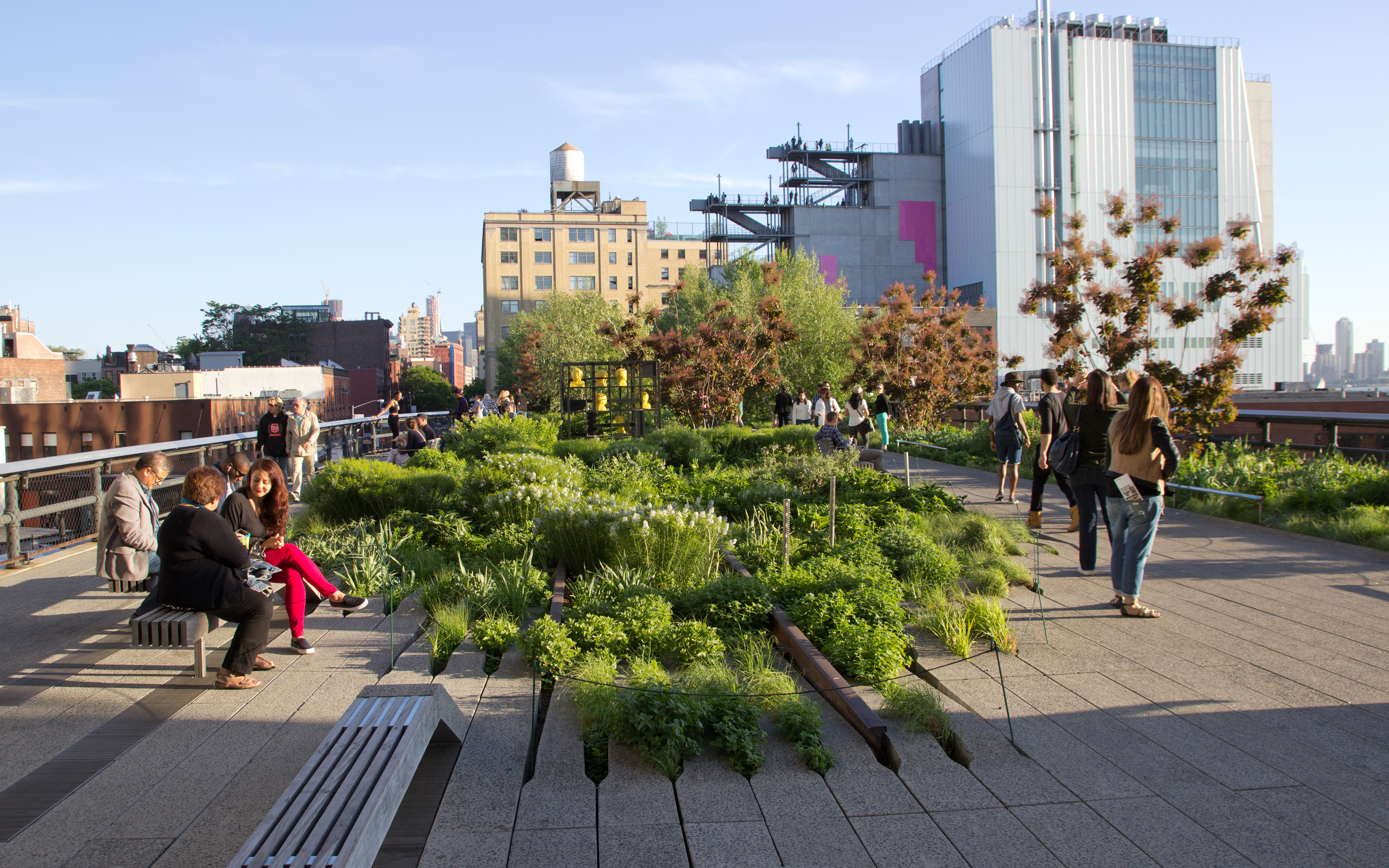 high line park new york city zinco green roof systems. Black Bedroom Furniture Sets. Home Design Ideas