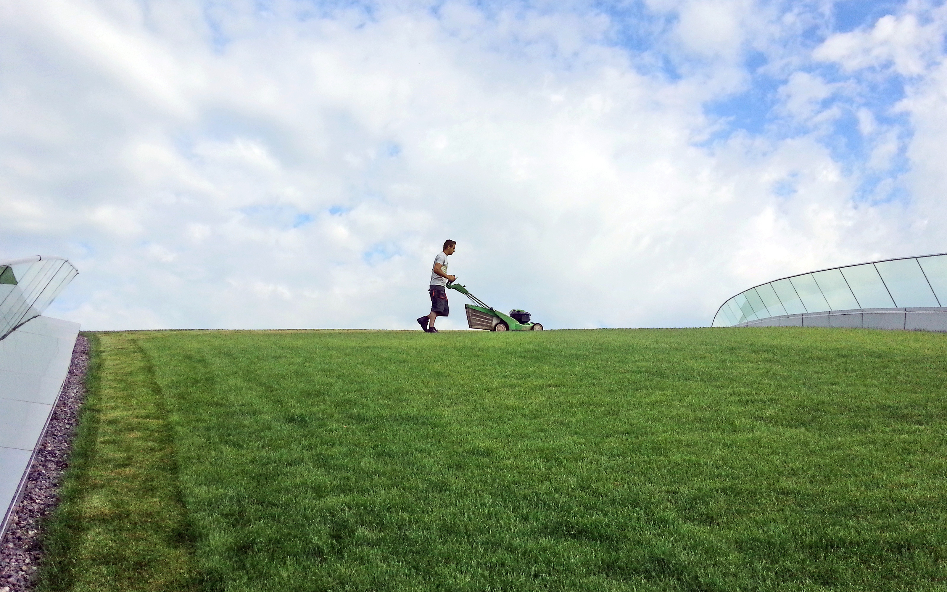 Man mowing grass on a green roof with lawn