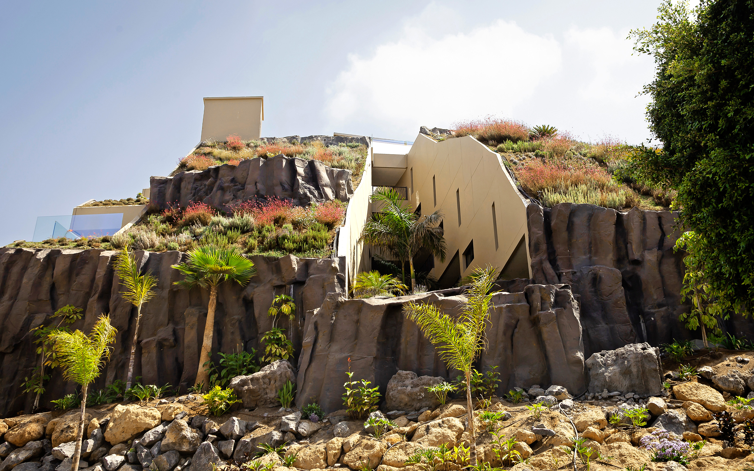 Steep pitched green roofs with shrubs, rocks and palm trees.