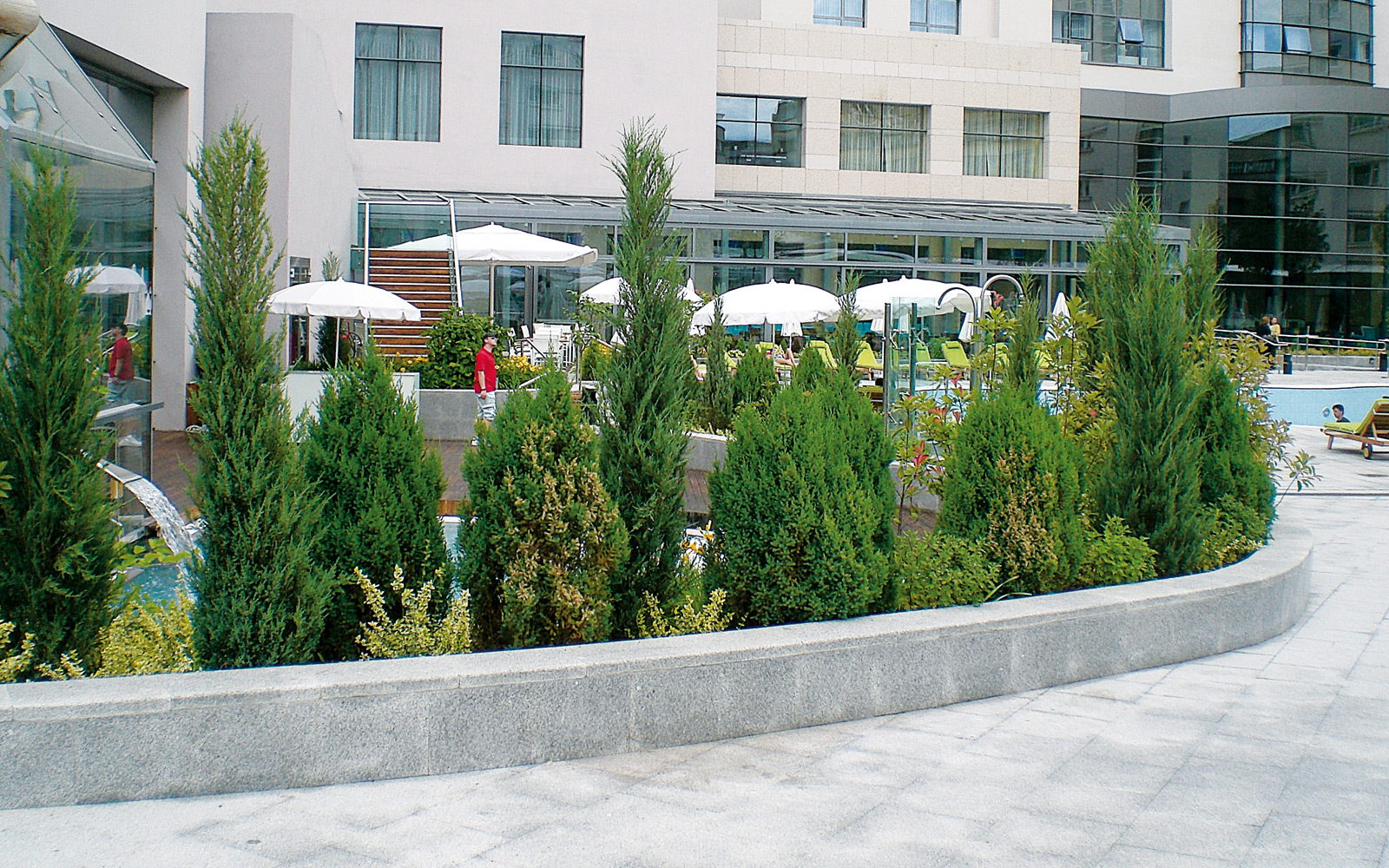 Curved walkways and plant bed with shrubs