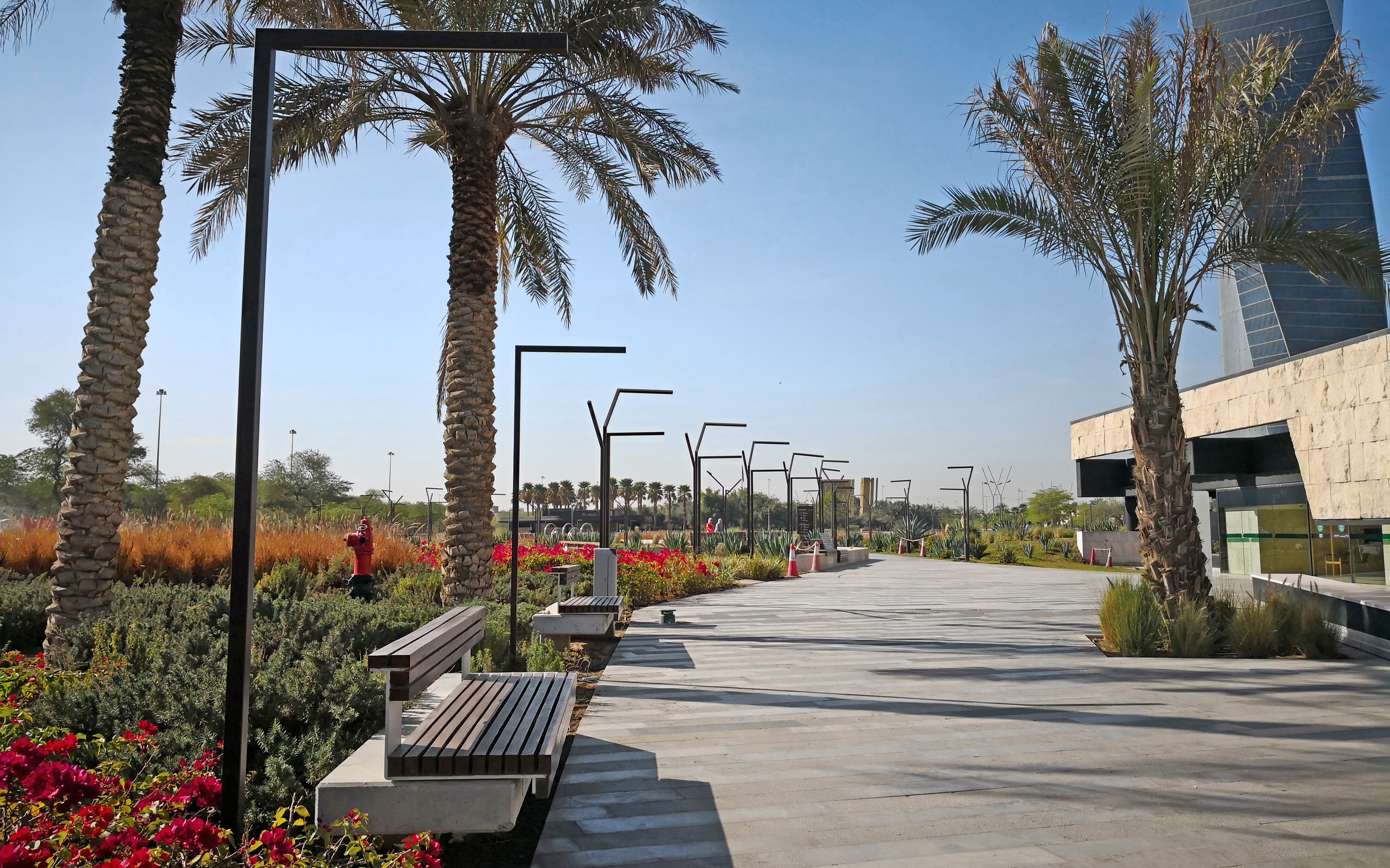Walkways with benches, plant beds and palm trees in a park