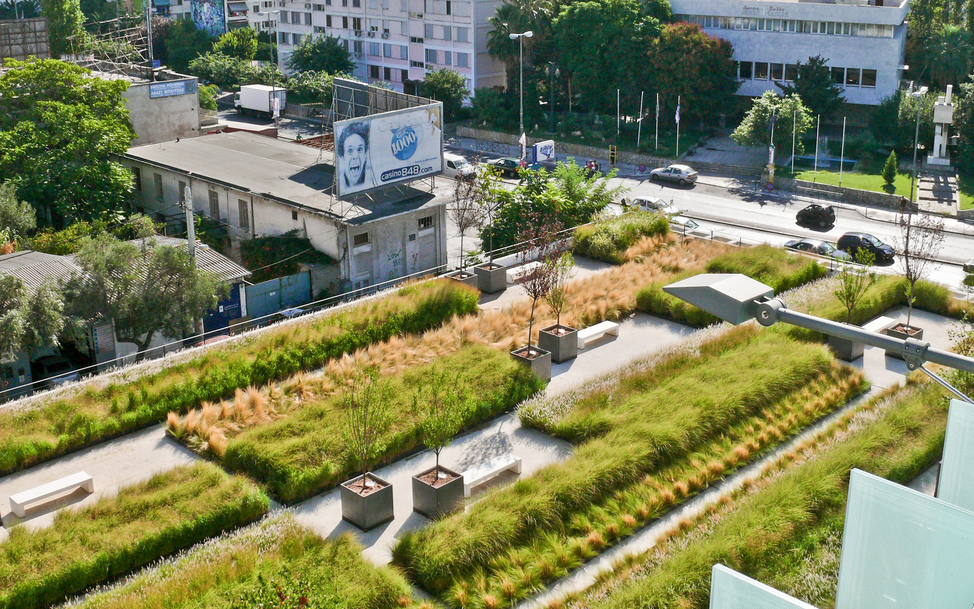 Bird's eye view onto a roof garden with ornamental grasses