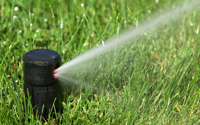 Irrigation of a lawn