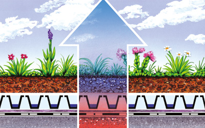 A green roof buffers temperature extremes