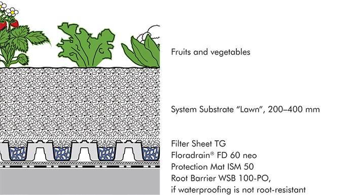"System build-up ""Urban Rooftop Farming"""