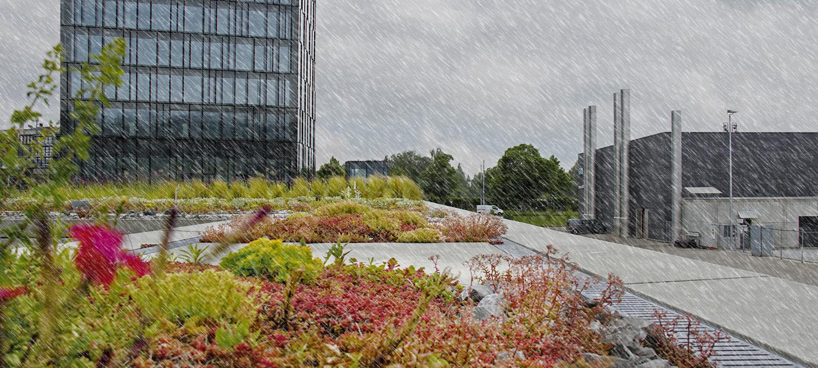 Stormwater Management Roof Zinco Green Roof Systems
