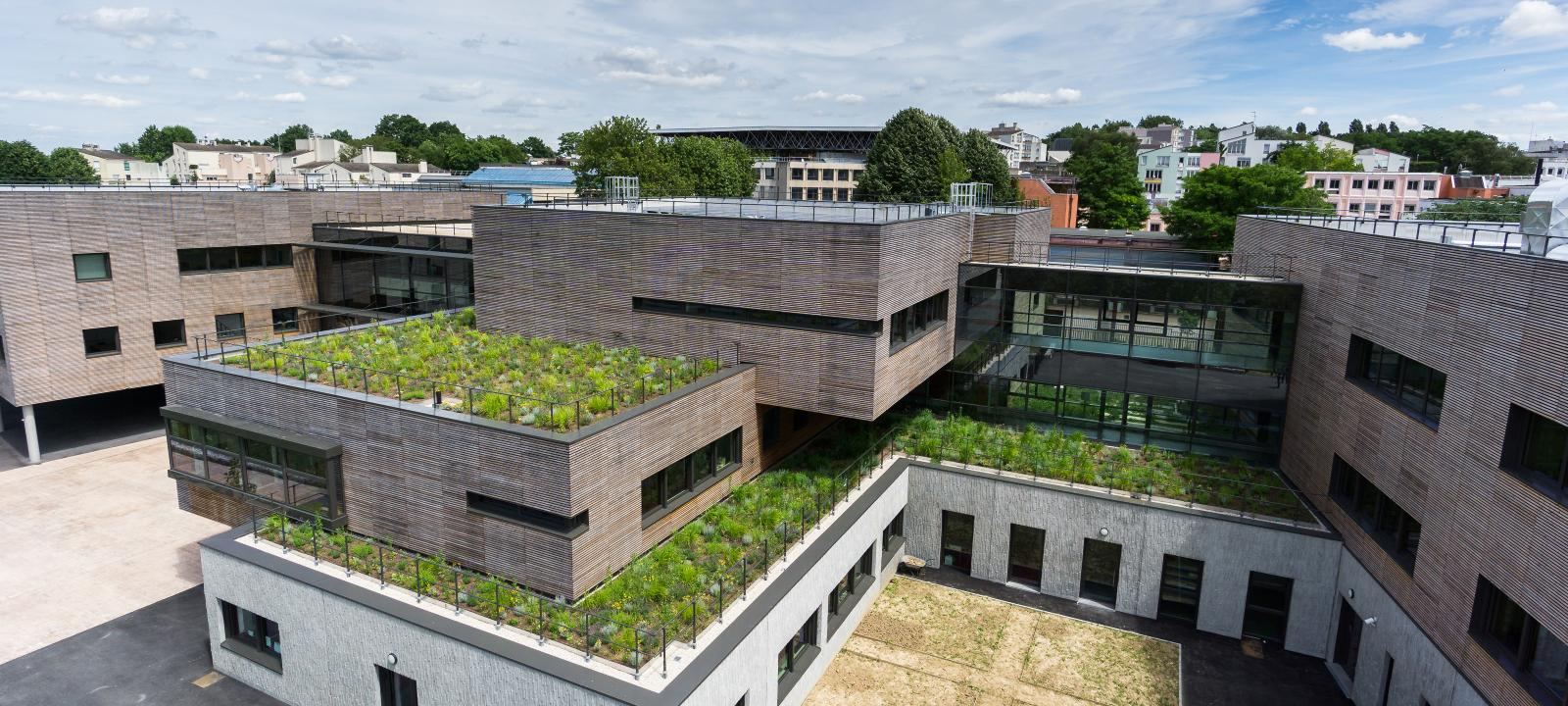 Irrigated Extensive Green Roof Zinco Green Roof Systems