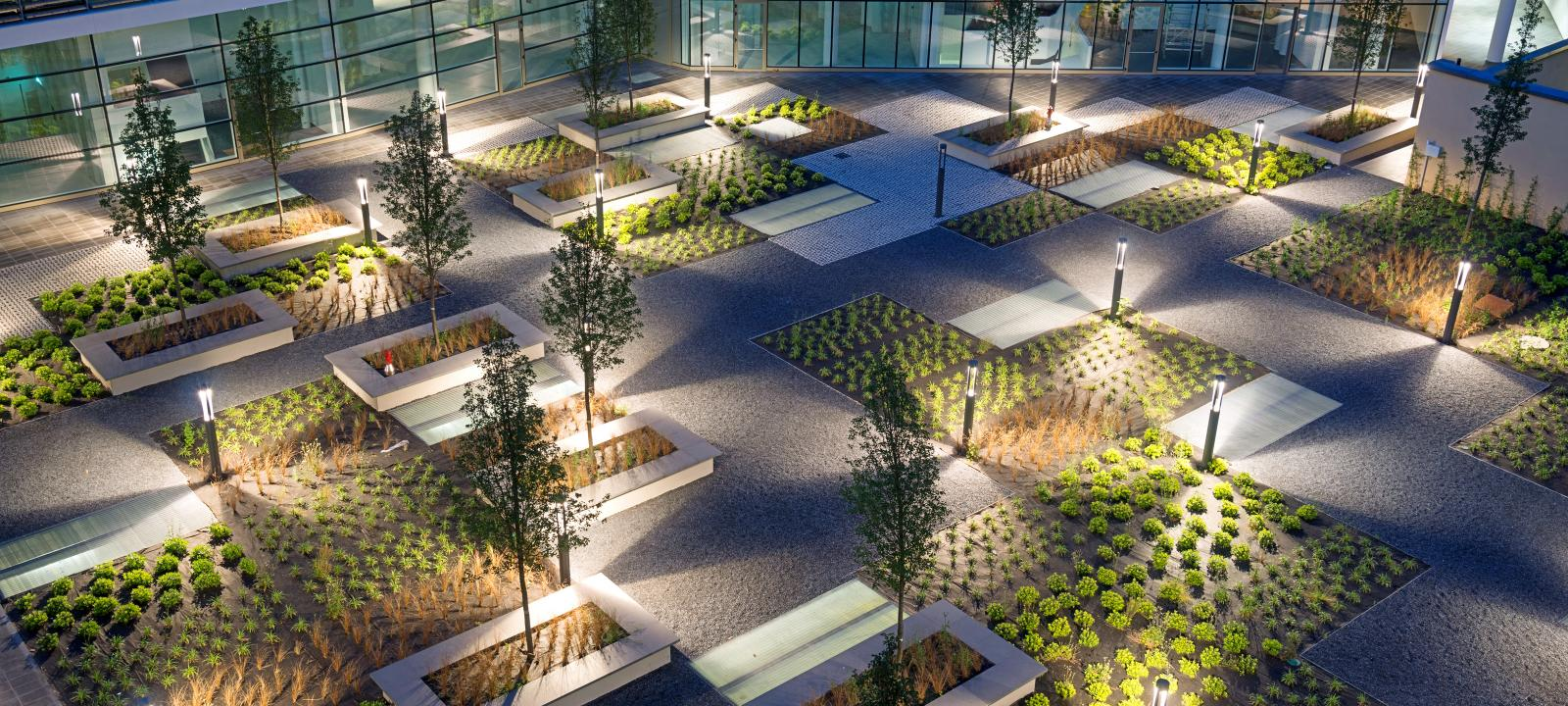 Illuminated courtyard with Sedum plant beds and small trees at night