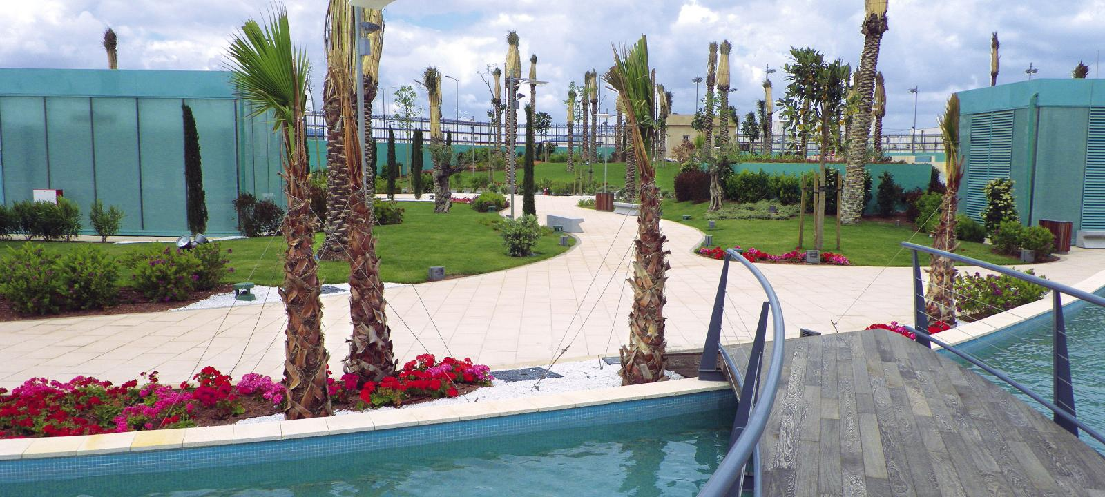 Roof garden with palm trees and a curved wooden bridge leading over a water basin