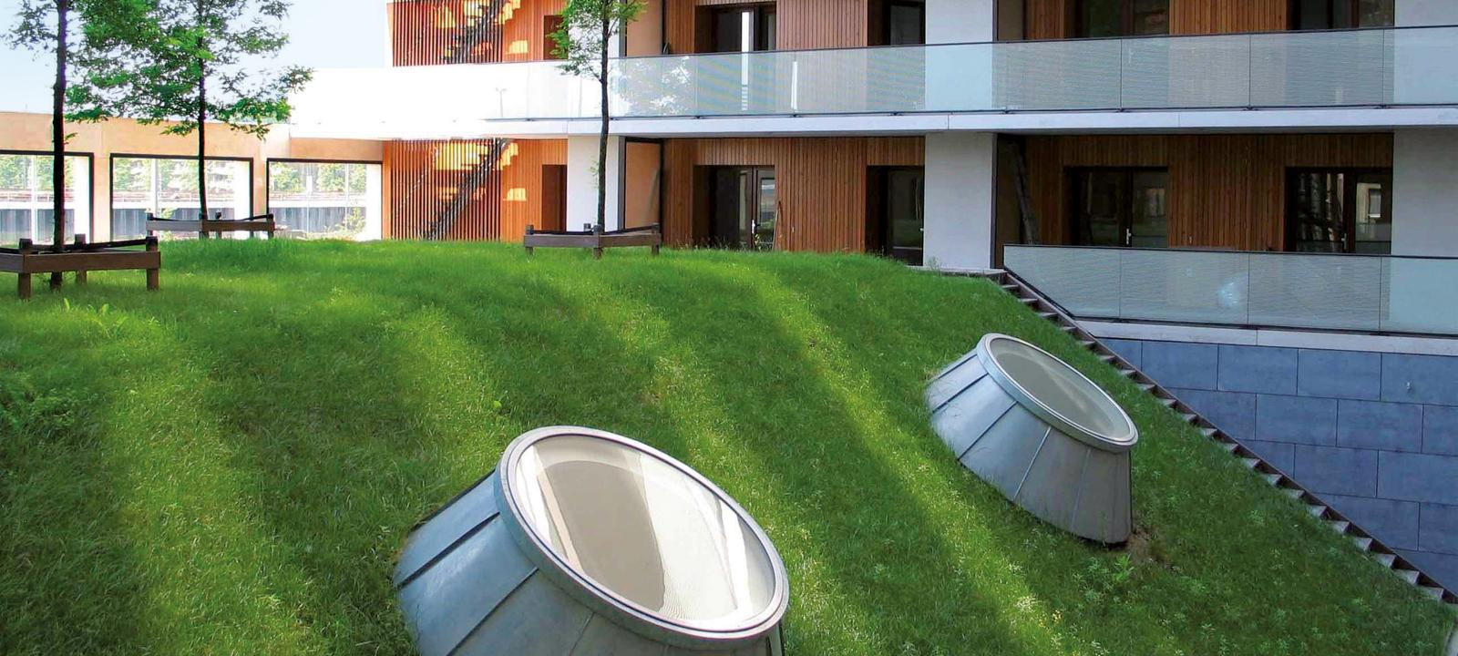 Green roof with pitched areas and skylights and flat areas with small trees