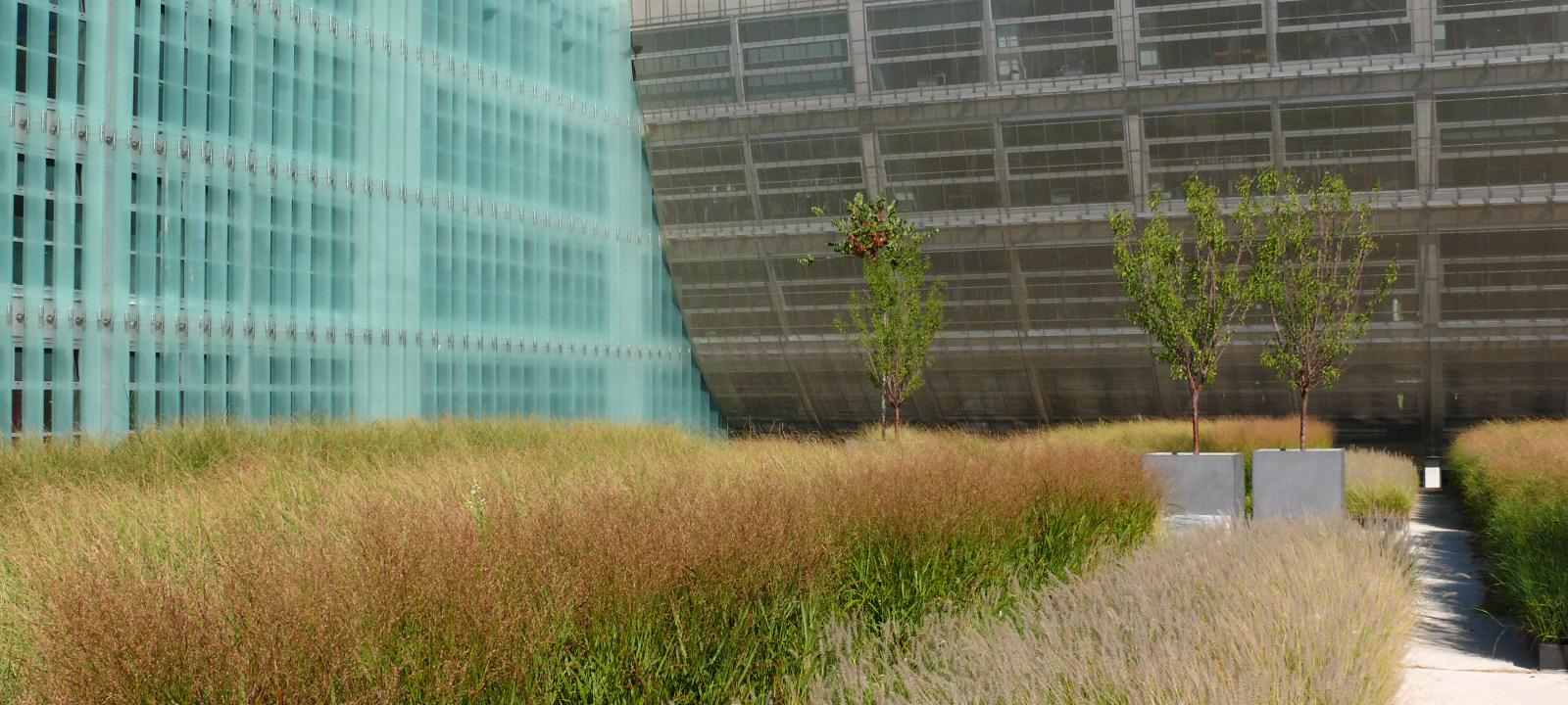 Shop Amp Trade Office Building Athens Zinco Green Roof