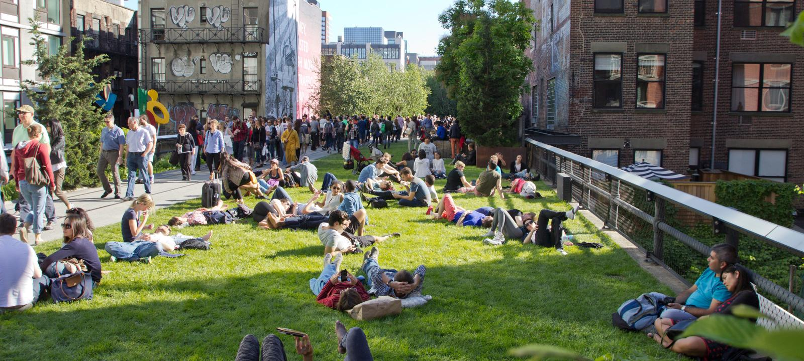 People sunbathing on a public lawn