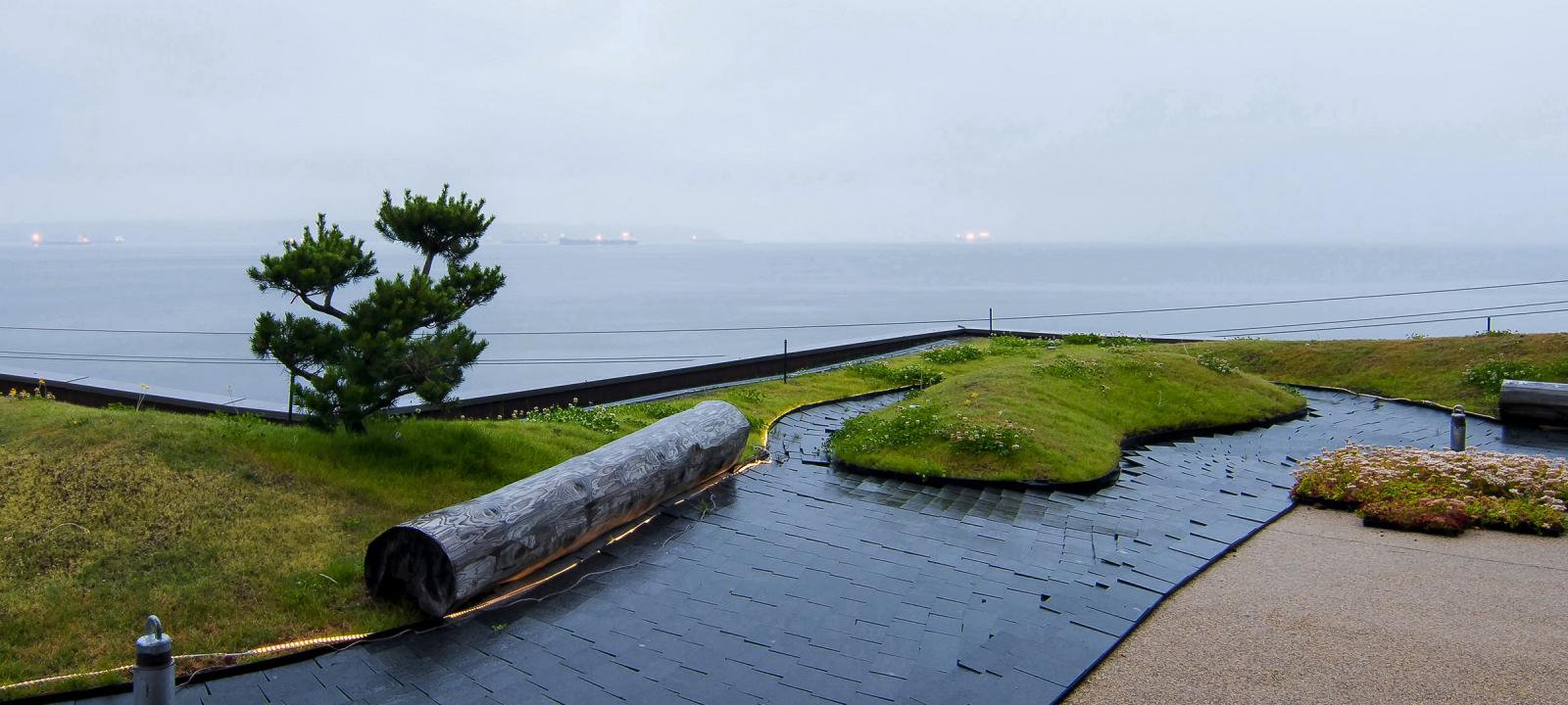 Roof garden with lawn, tree trunk, small pine tree and subtle illumination at dawn