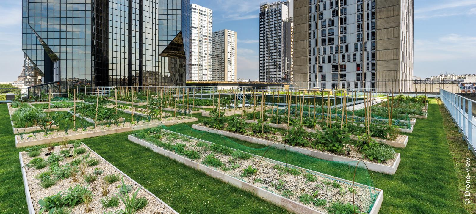 Le Cordon Bleu Paris Zinco Green Roof Systems