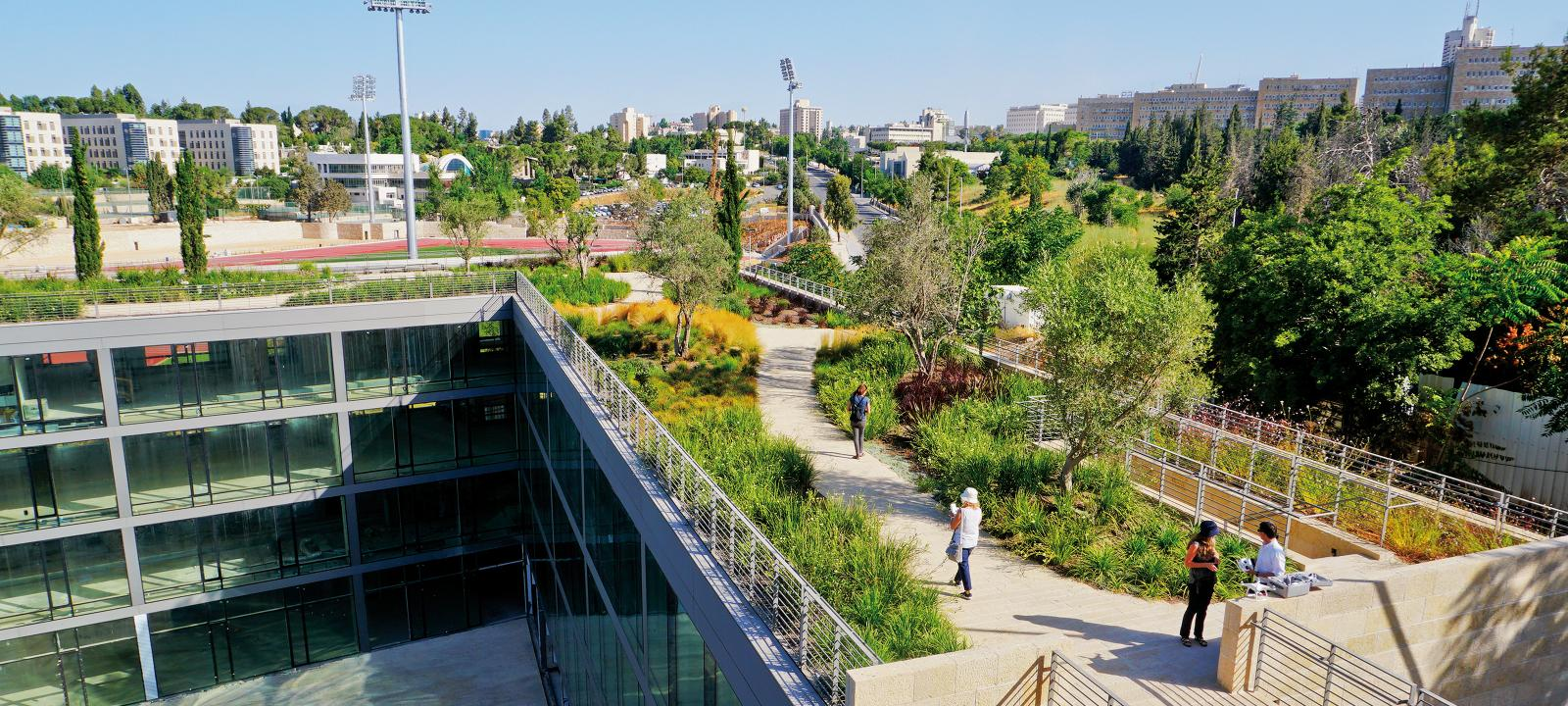 Park Like Green Roof With People Strolling Around
