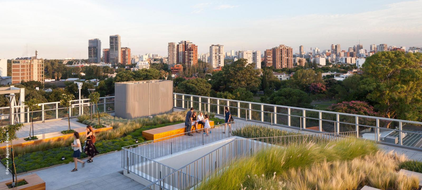 Roof garden in the city
