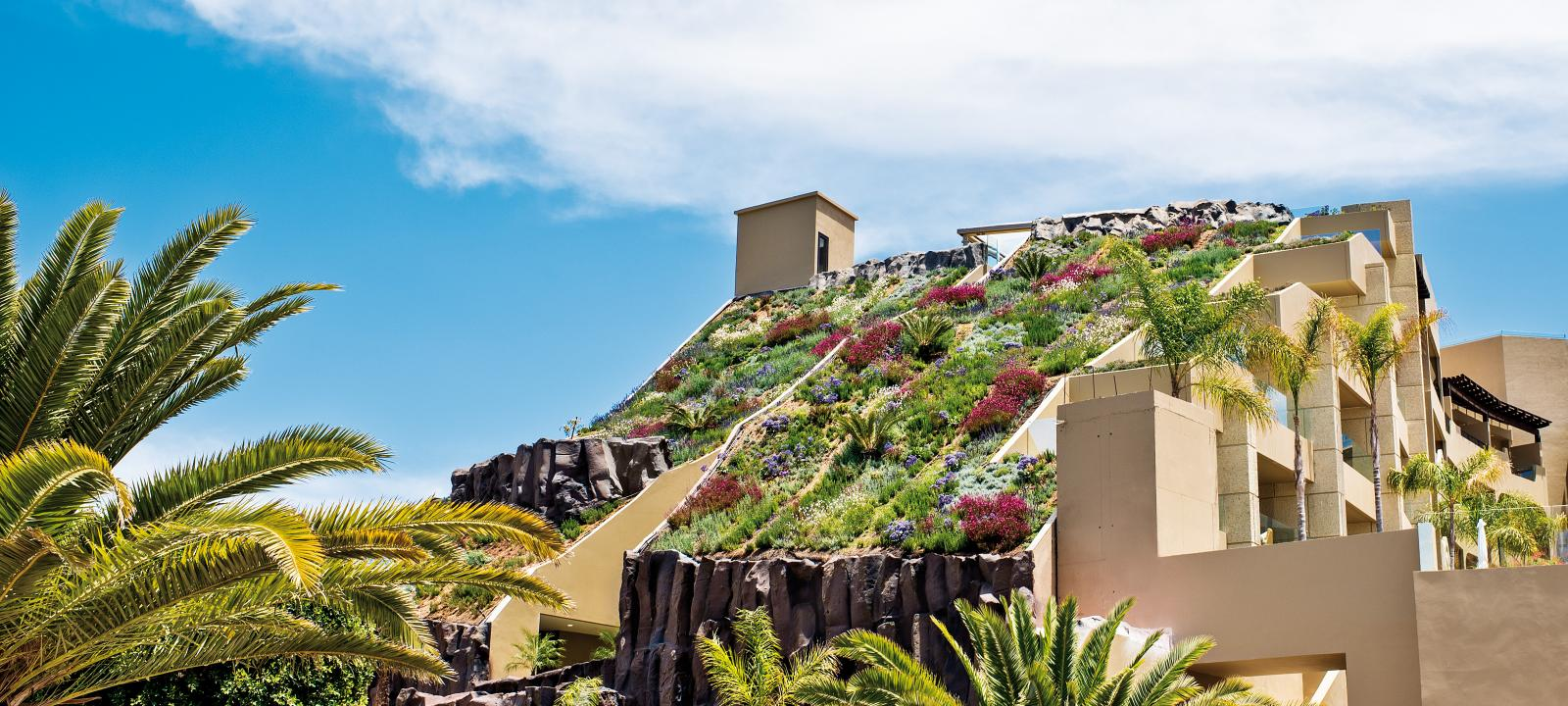 Steep pitched green roof with colourful vegetation