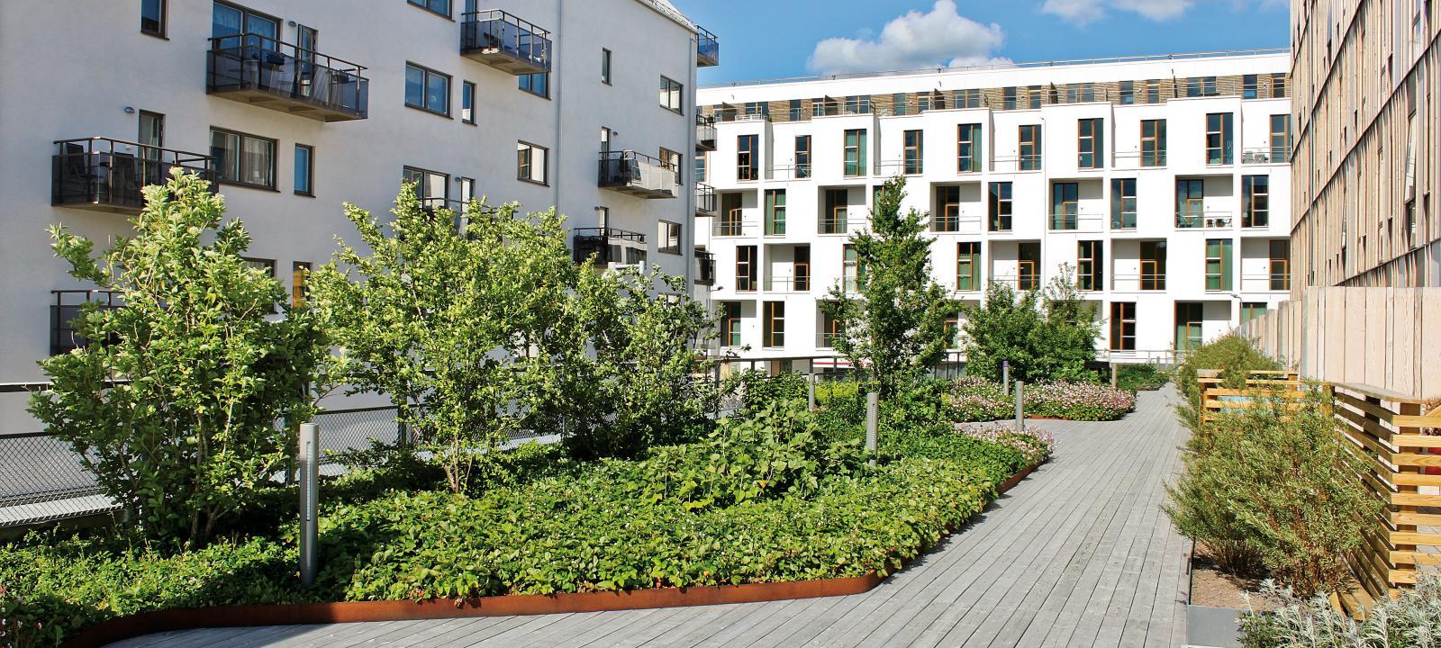 Smaragden Uppsala Rosendal Zinco Green Roof Systems