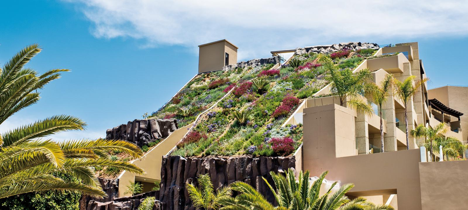 Steep pitched green roof in full blossom