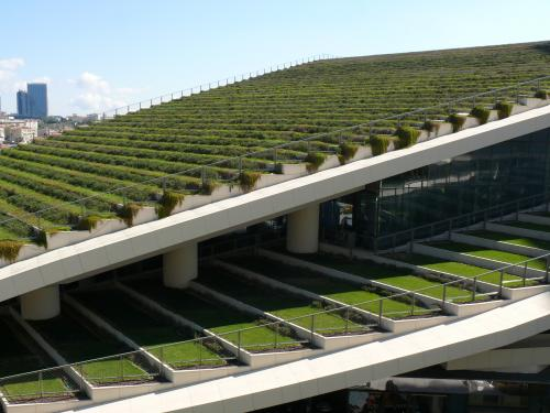 Terraced sloped green roofs