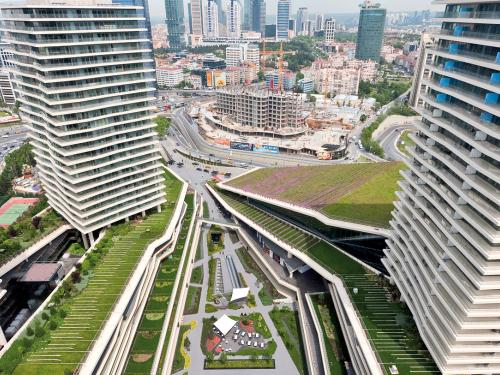 Roof garden amidst skyscrapers