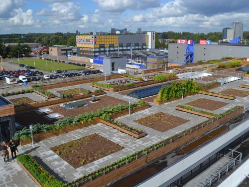 Bird's eye view on a large rooftop farm