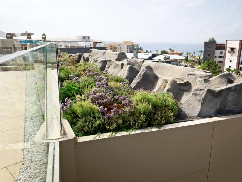 Green roof and roof terrace