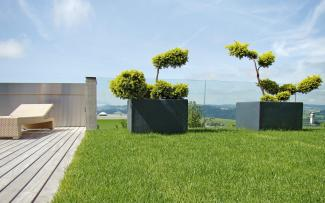 Roof garden with lawn and wooden deck
