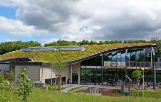 A curving green roof in the shape of a wave