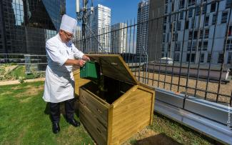 Chef disposes of compostable waste on the roof garden