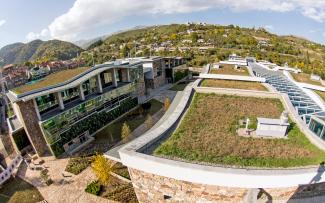 Buildings with extensive green roofs