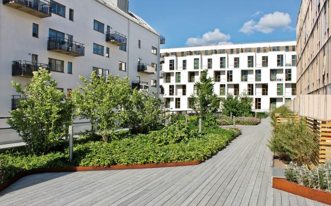 Roof garden with luscious plant beds and wooden decking