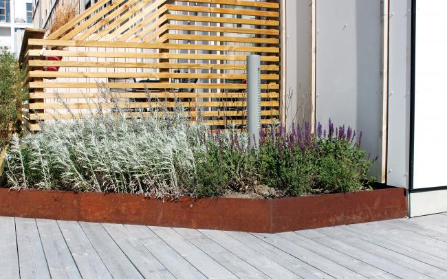 Plant bed with herbs and rusty metal edging on a wooden deck.